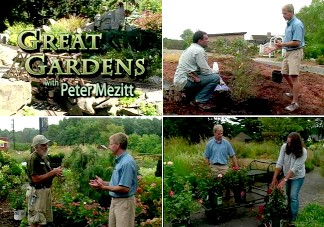 Great Gardens Is A Half Hour Gardening Program That Focuses On Plants And  All Things Related To Successful Gardening And Beautiful Landscapes In Our  Area.