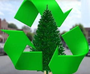 Christmas Tree Pick Up | Hopkinton MA Community TV Stations